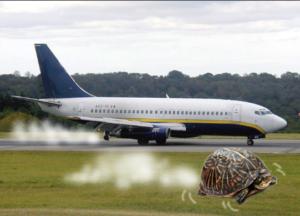 Ryanair, ancora 5 ore di ritardo: Soccorsoalvolo, la soluzione per te